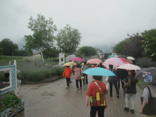 4s雨天の人出IMG_7290.jpg