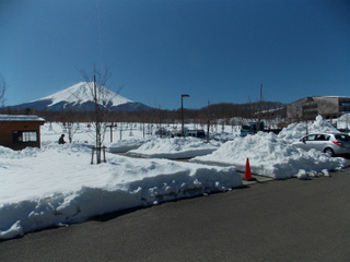 s富士散策公園DSCN9046.jpg